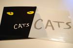 Cats04.jpg